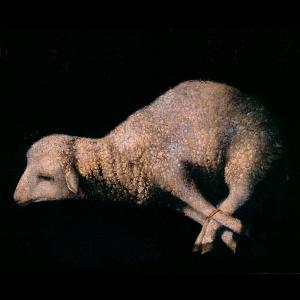 Pormenor da pintura Cordeiro Místico