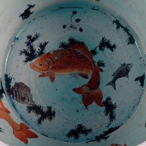 Pormenor do aquário